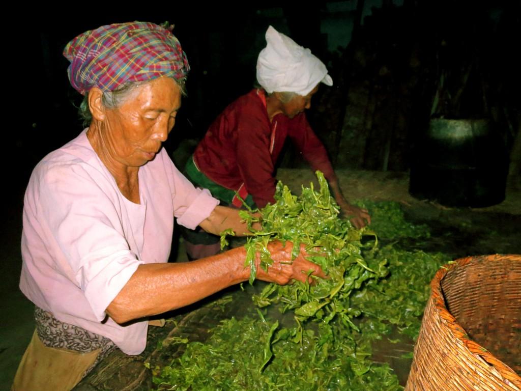Die Frauen trocknen den frischen Grüntee.